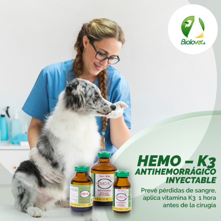 Campaa-Hemo-K3
