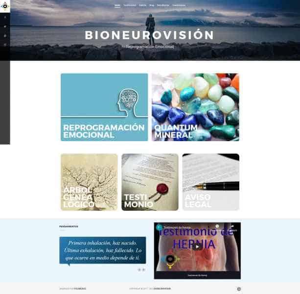 bioneurovisionweb